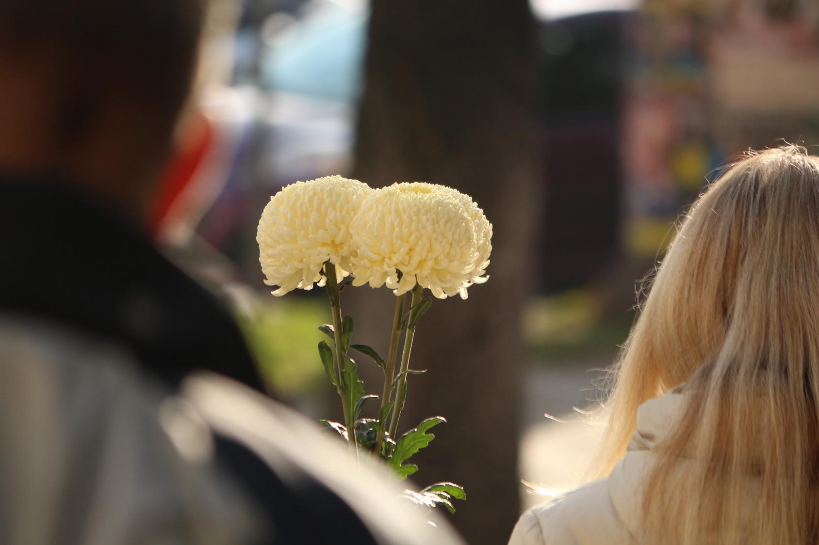 Frau zum Valentinstag mit Blume
